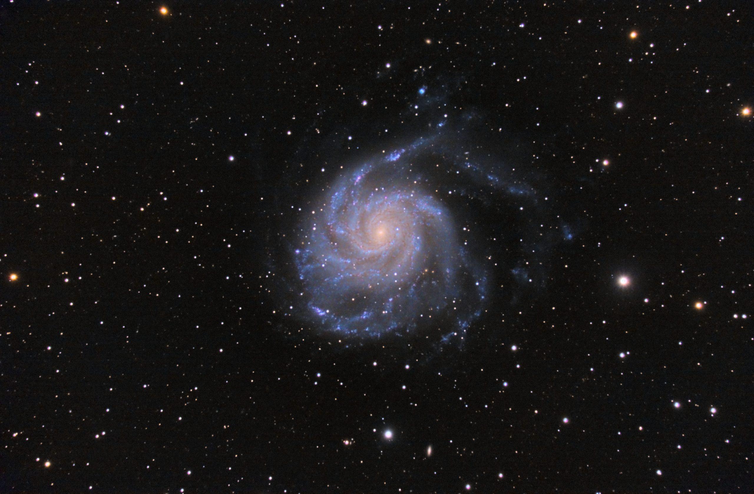 M101 im Großen Bär